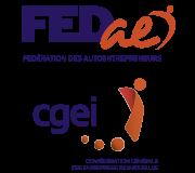Logo fedae cgei 1